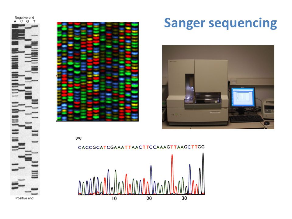 Sanger sequencing Sequencing - ddNTP