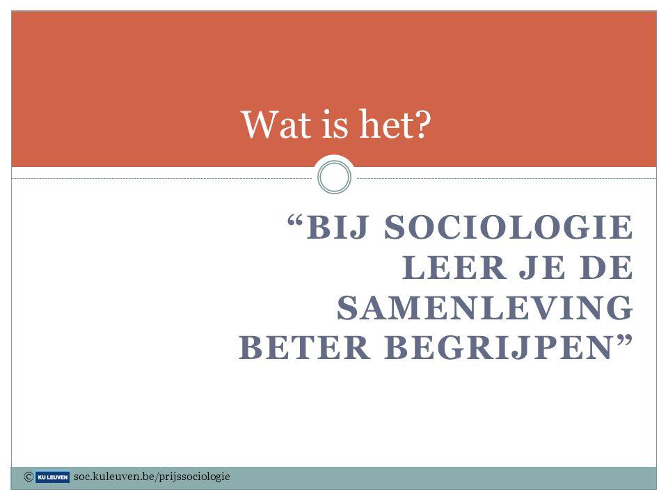 Wat is het Bij sociologie leer je de samenleving beter begrijpen