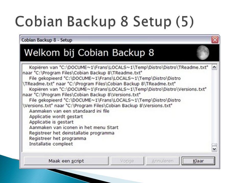 Cobian Backup 8 Setup (5)
