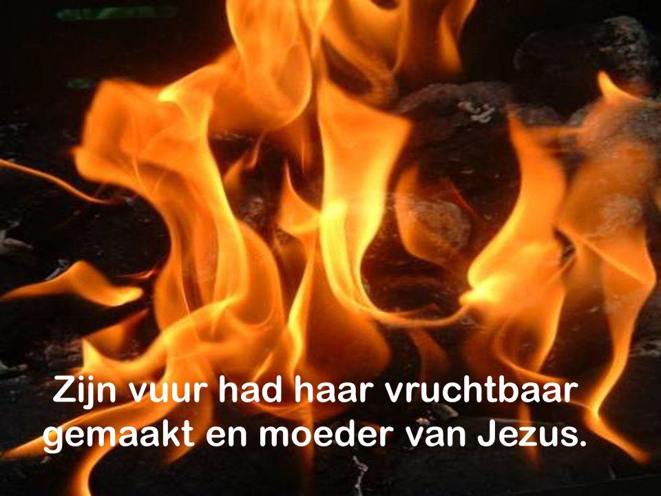 Zijn vuur had haar vruchtbaar gemaakt en moeder van Jezus.