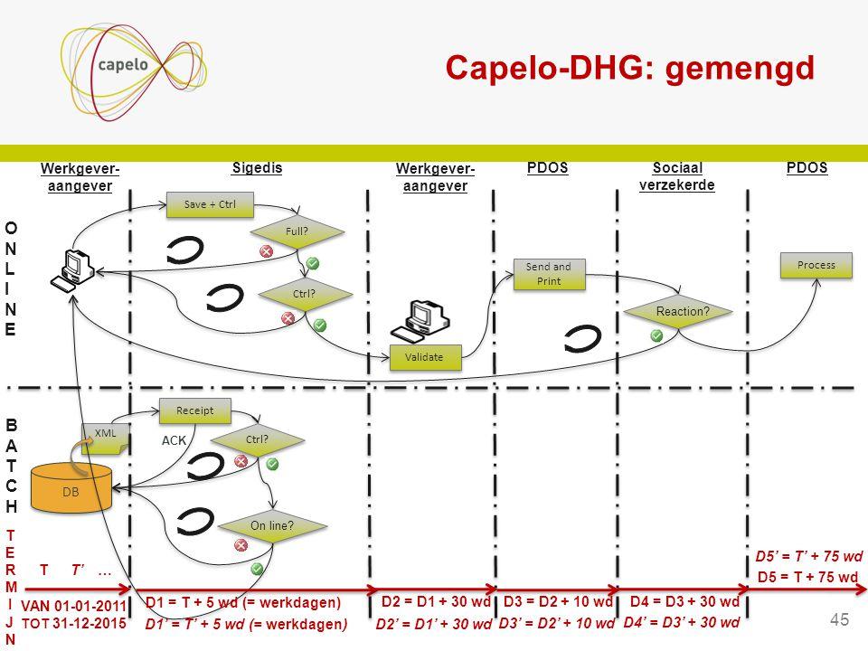Capelo-DHG: gemengd ONLINE BATCH 45 Sigedis PDOS Werkgever- aangever