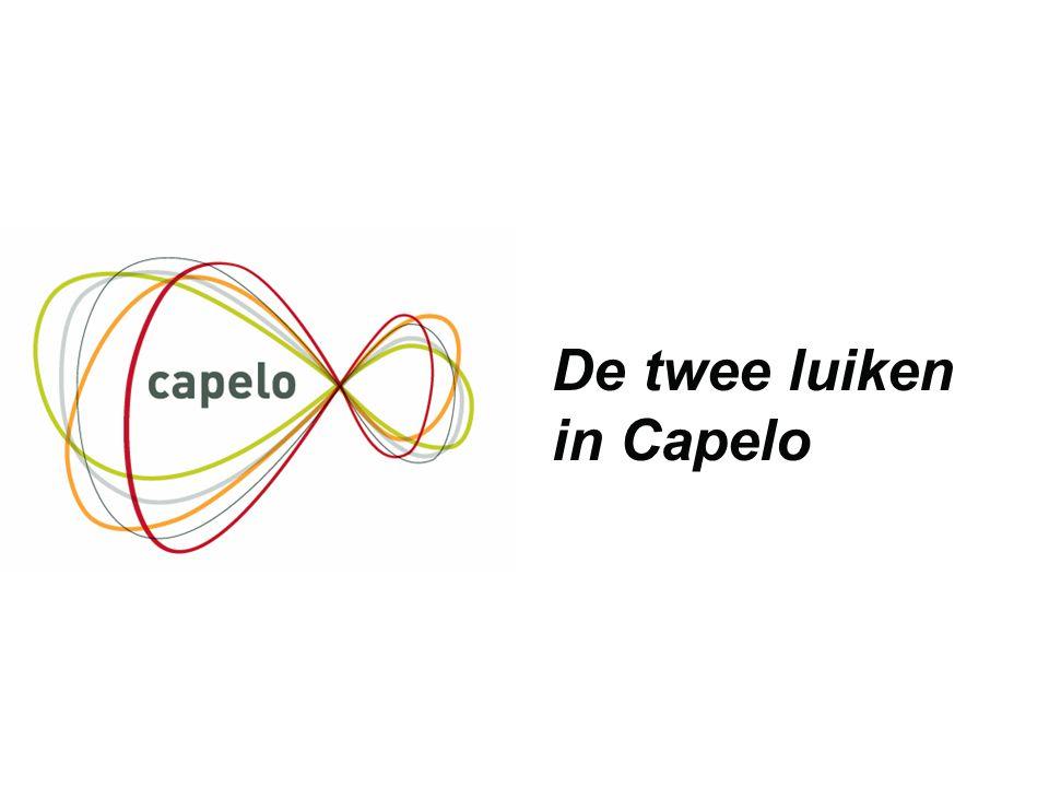 De twee luiken in Capelo