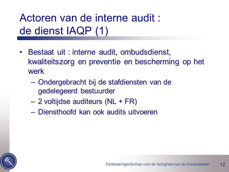 Actoren van de interne audit : de dienst IAQP (1)