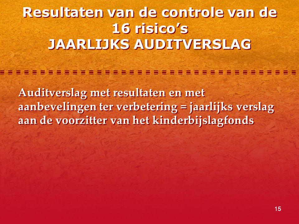 Resultaten van de controle van de 16 risico's JAARLIJKS AUDITVERSLAG