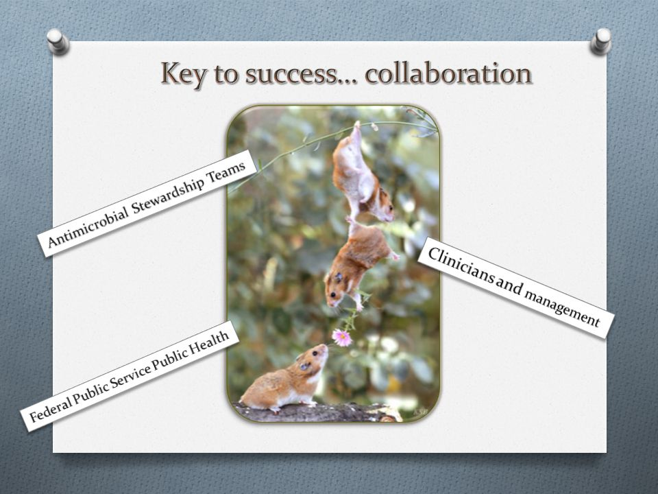 Key to success… collaboration