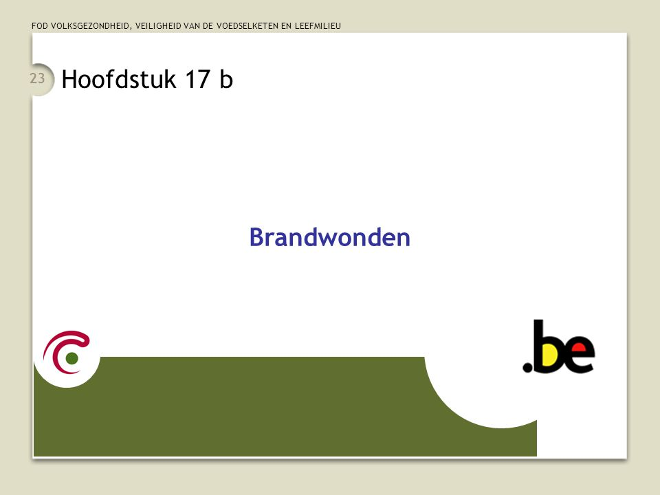 Hoofdstuk 17 b Brandwonden