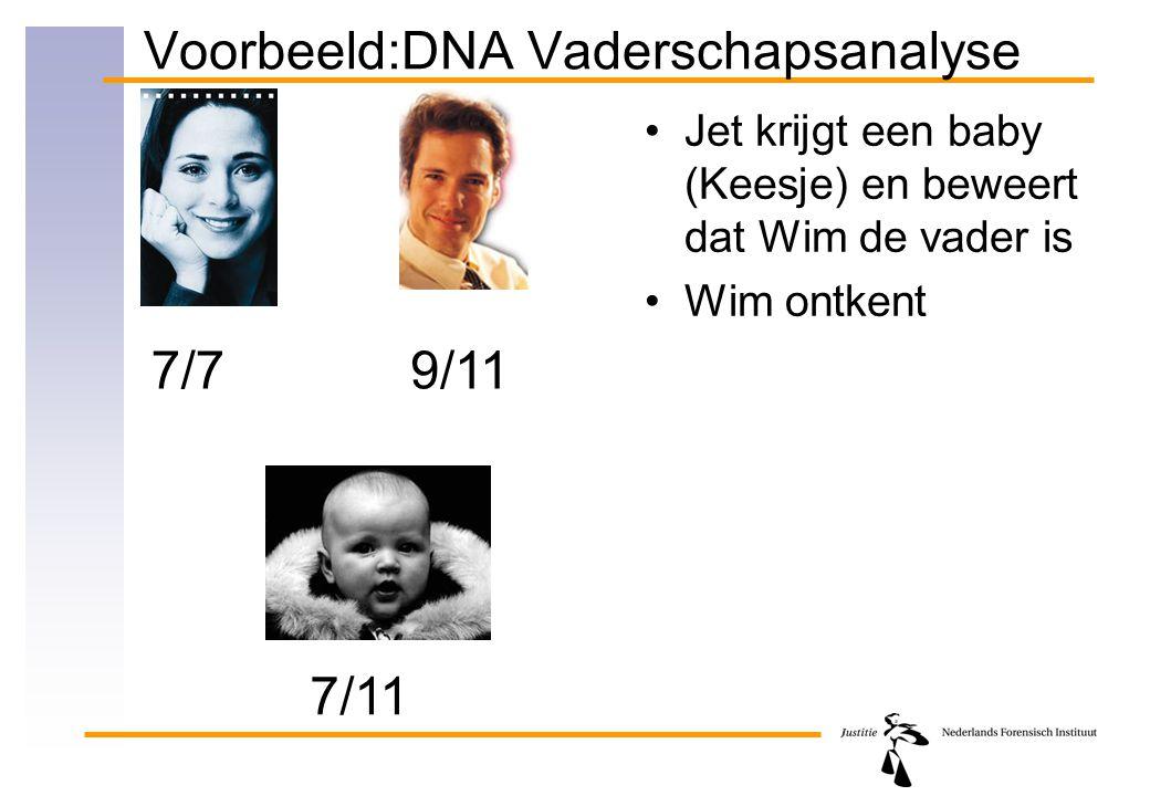 Voorbeeld:DNA Vaderschapsanalyse