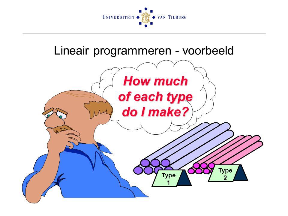 Lineair programmeren - voorbeeld