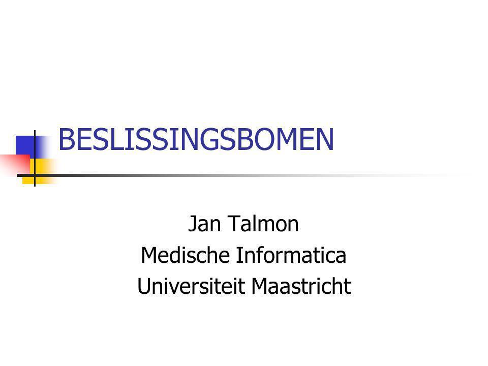 Jan Talmon Medische Informatica Universiteit Maastricht