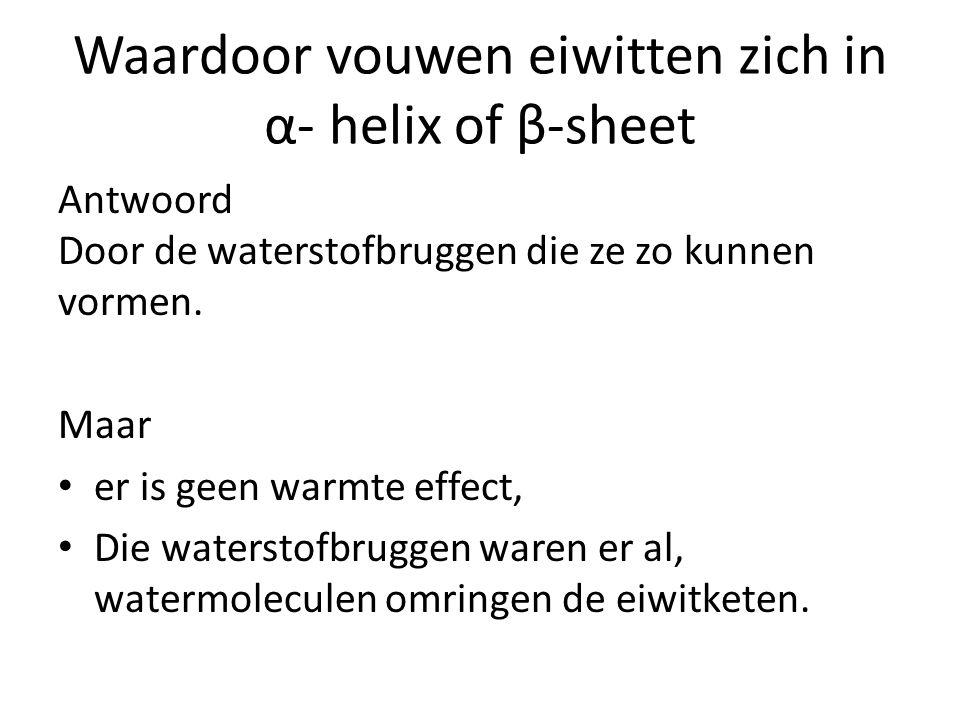 Waardoor vouwen eiwitten zich in α- helix of β-sheet