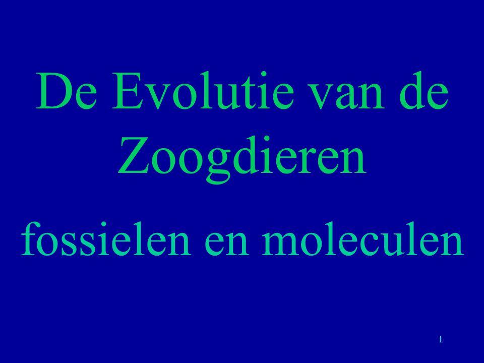 De Evolutie van de Zoogdieren