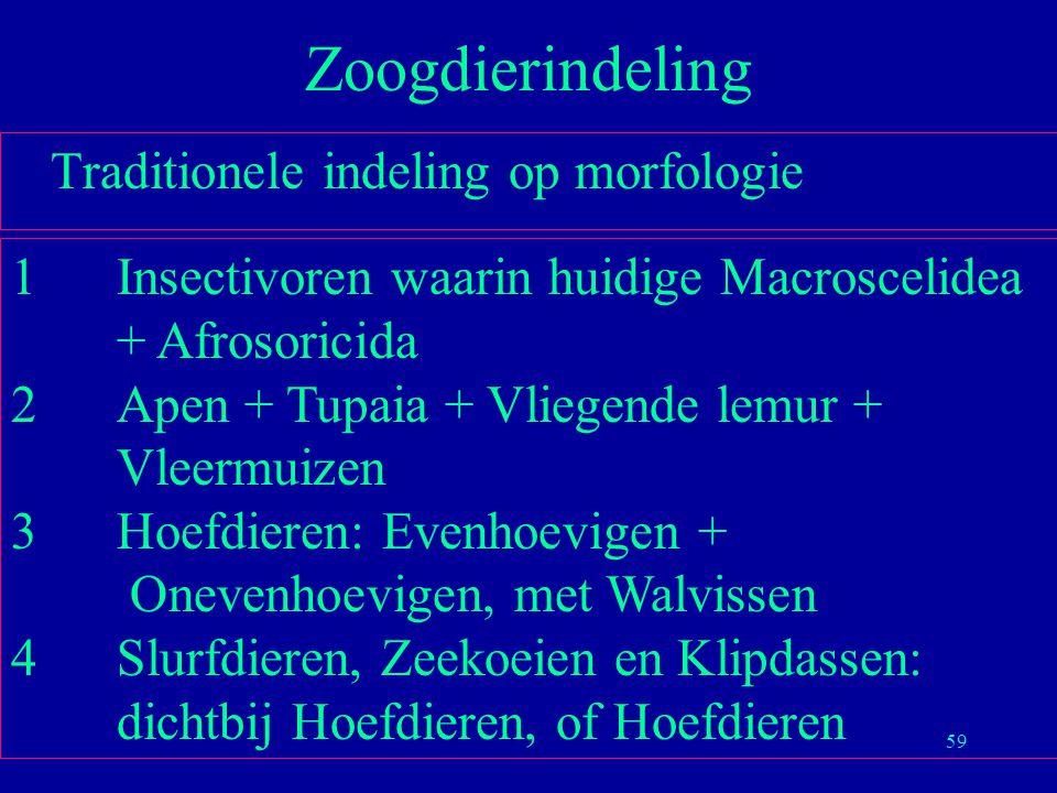 Zoogdierindeling Traditionele indeling op morfologie