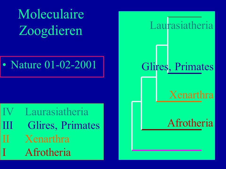 Moleculaire Zoogdieren