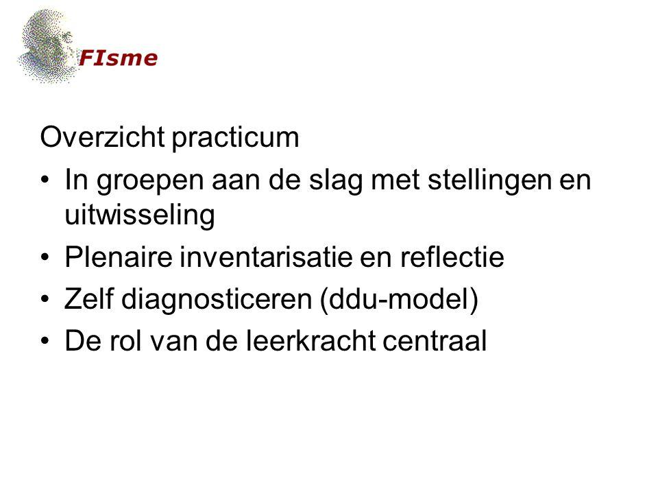 Overzicht practicum In groepen aan de slag met stellingen en uitwisseling. Plenaire inventarisatie en reflectie.