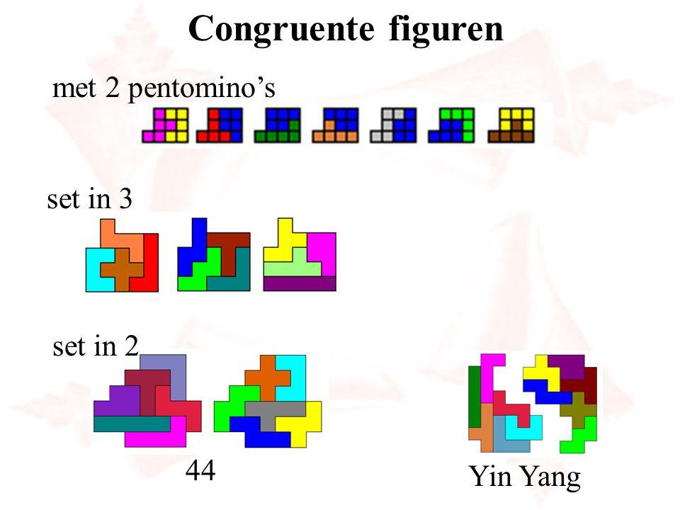 Congruente figuren met 2 pentomino's set in 3 set in 2 44 Yin Yang