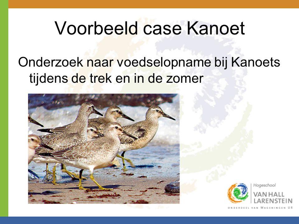 Voorbeeld case Kanoet Onderzoek naar voedselopname bij Kanoets tijdens de trek en in de zomer