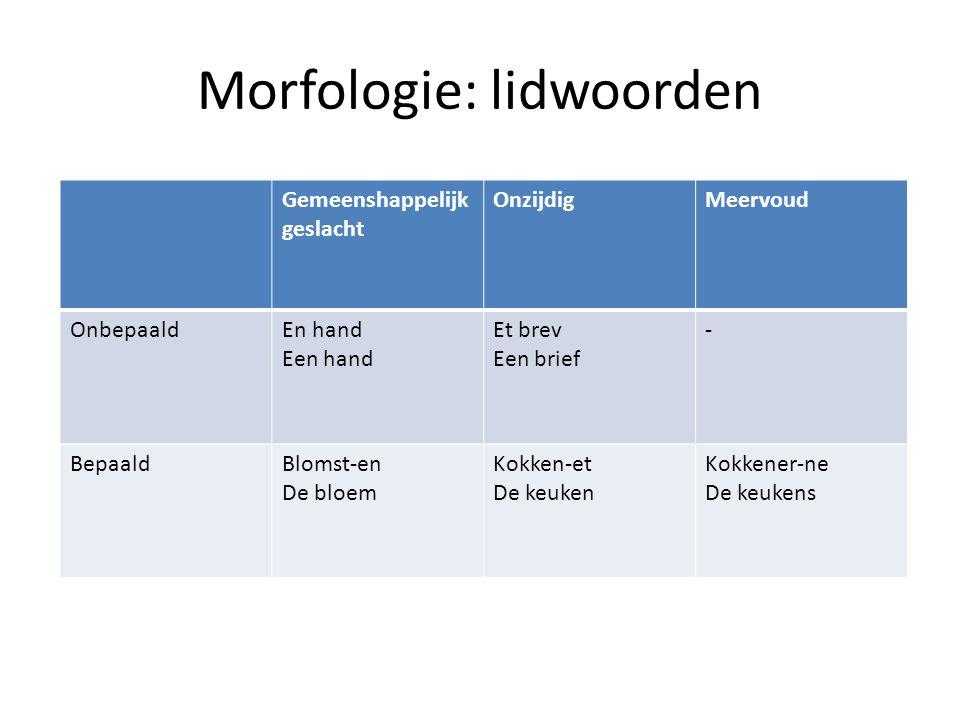 Morfologie: lidwoorden