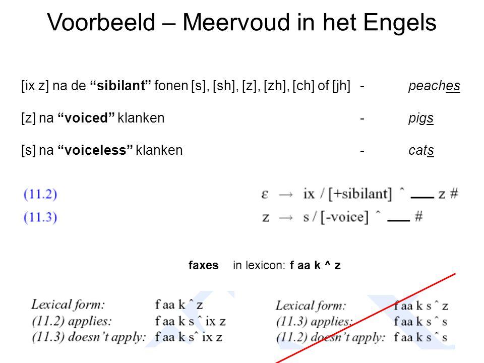 Voorbeeld – Meervoud in het Engels