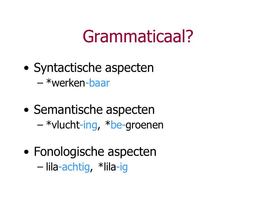 Grammaticaal Syntactische aspecten Semantische aspecten