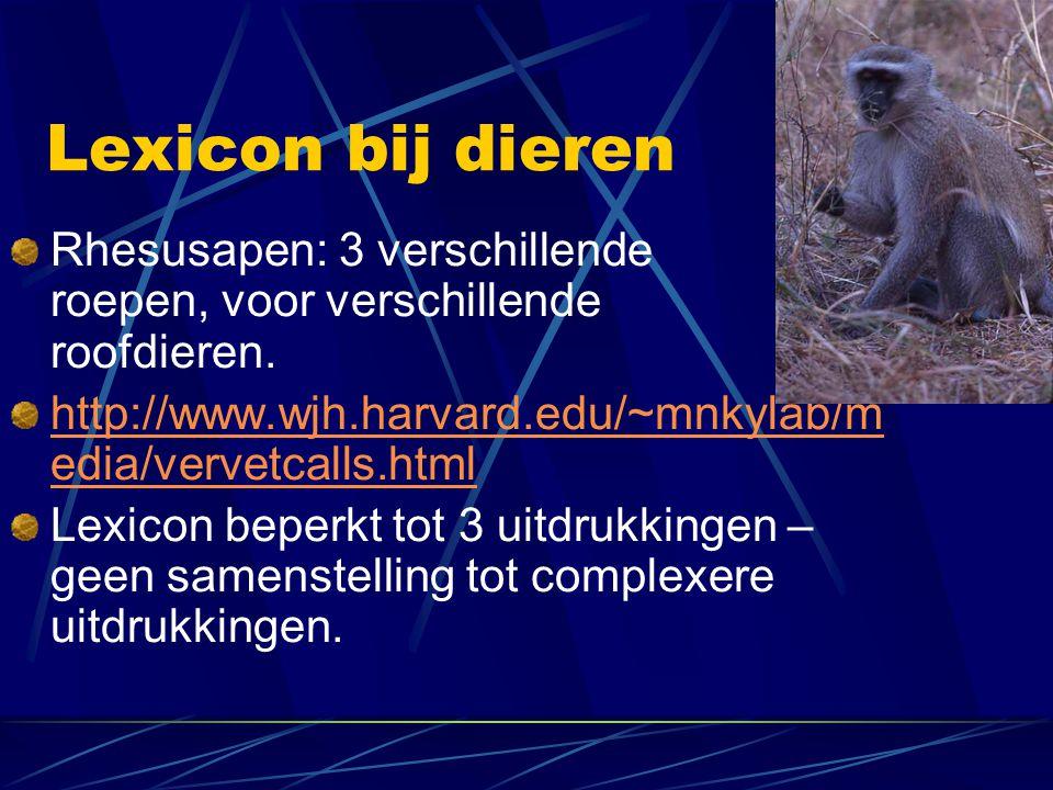 Lexicon bij dieren Rhesusapen: 3 verschillende roepen, voor verschillende roofdieren.