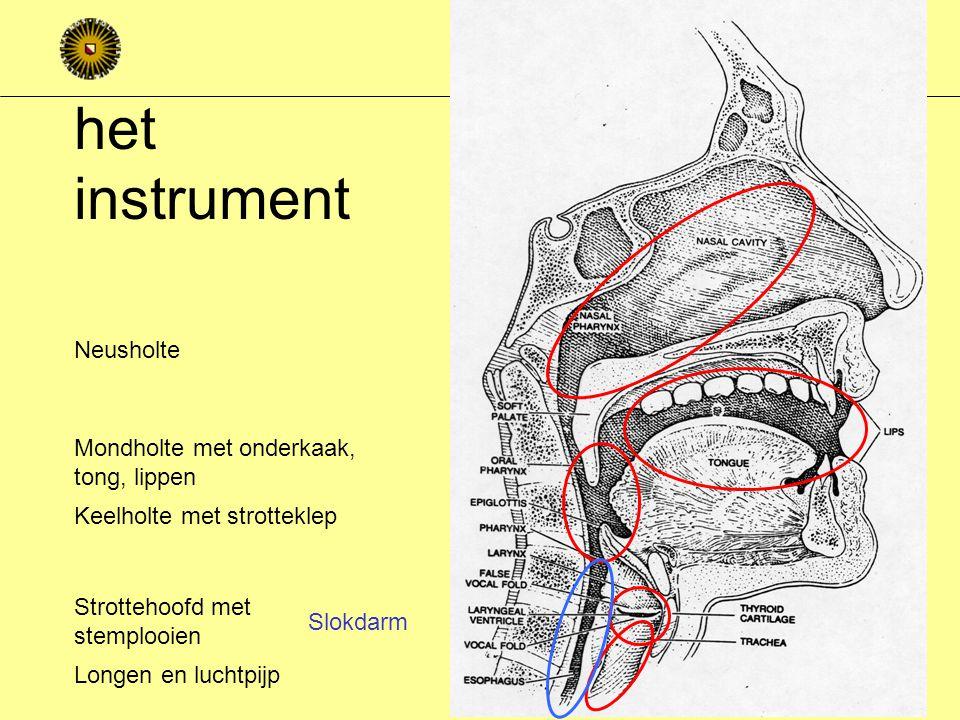 het instrument Neusholte Mondholte met onderkaak, tong, lippen