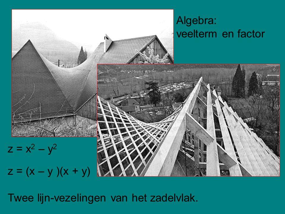 Algebra: veelterm en factor z = x2 – y2 z = (x – y )(x + y) Twee lijn-vezelingen van het zadelvlak.