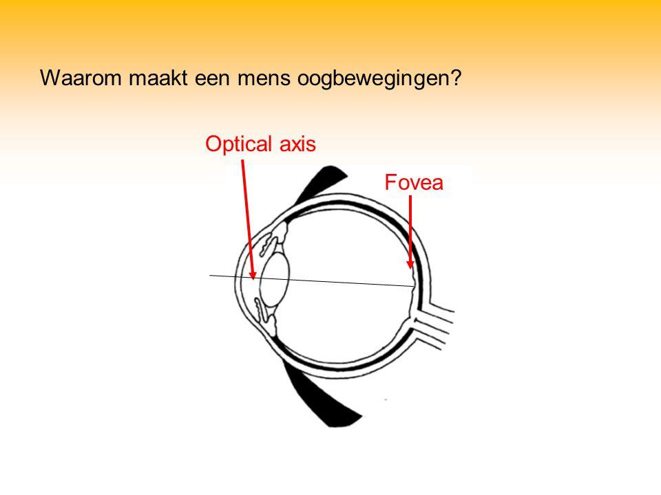 Waarom maakt een mens oogbewegingen