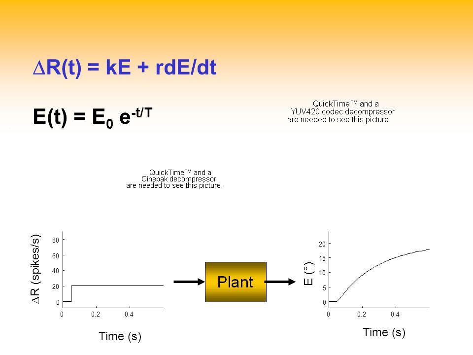 DR(t) = kE + rdE/dt E(t) = E0 e-t/T DR (spikes/s) E (°) Time (s)