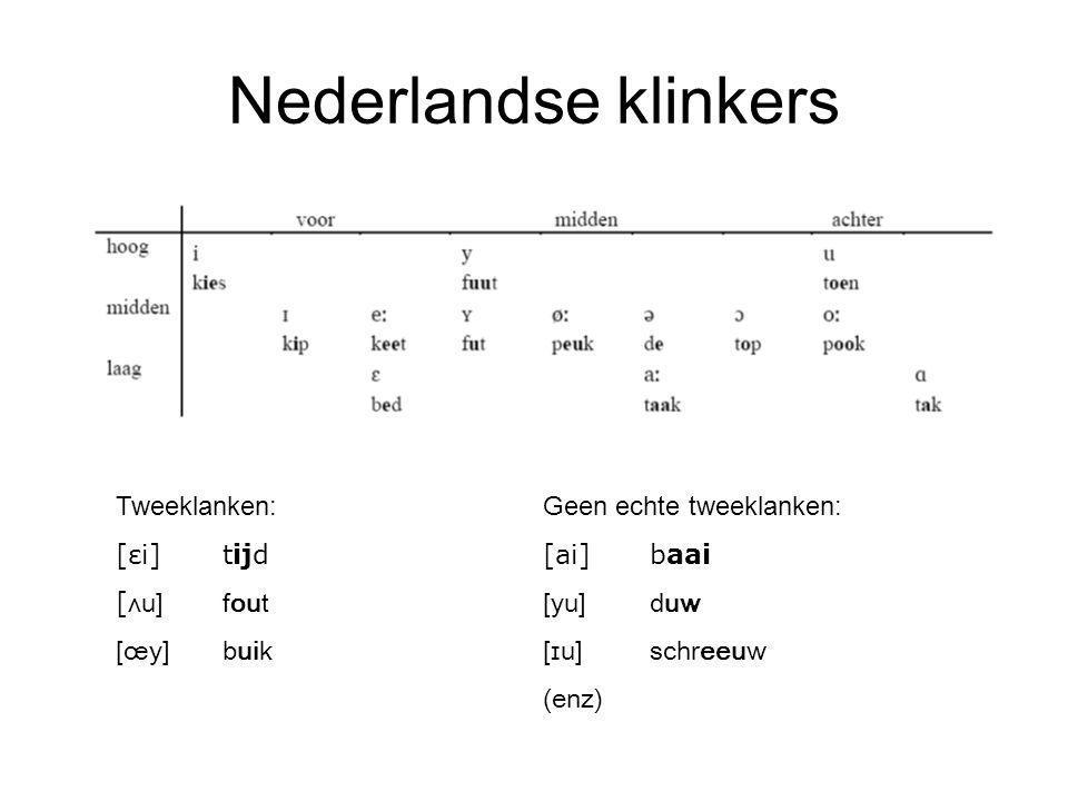 Nederlandse klinkers Tweeklanken: Geen echte tweeklanken: