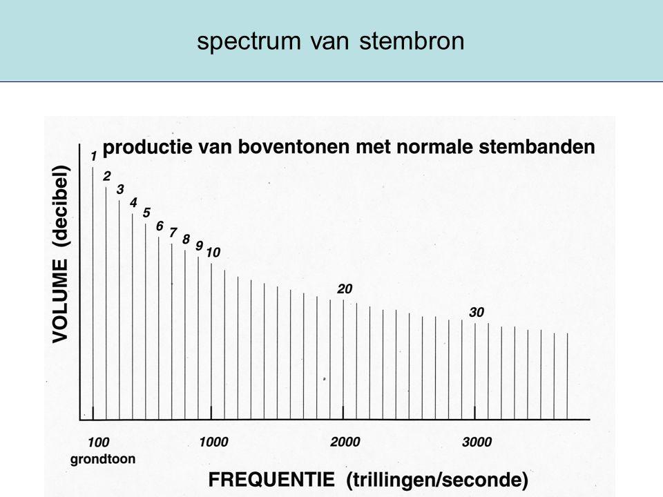 spectrum van stembron