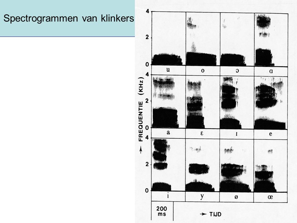 Spectrogrammen van klinkers