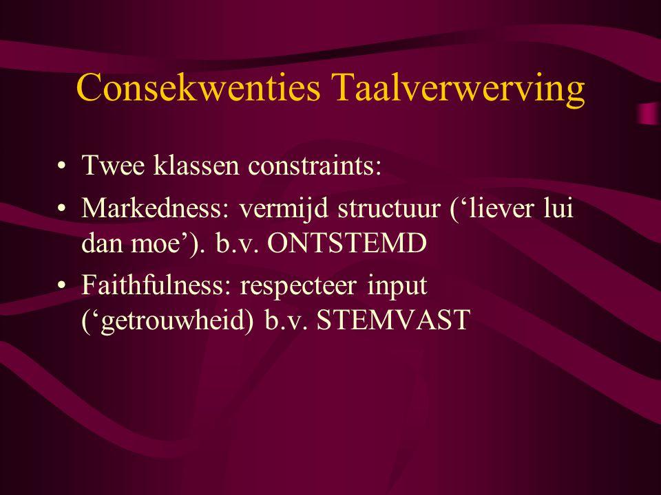 Consekwenties Taalverwerving