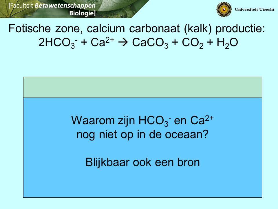 Waarom zijn HCO3- en Ca2+ nog niet op in de oceaan