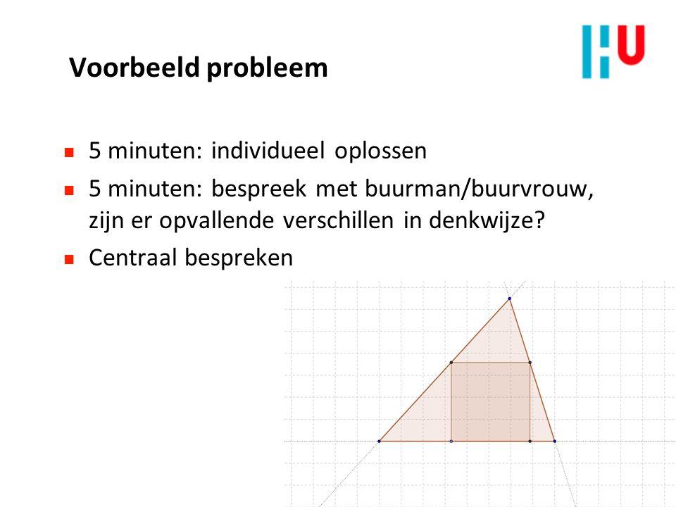 Voorbeeld probleem 5 minuten: individueel oplossen