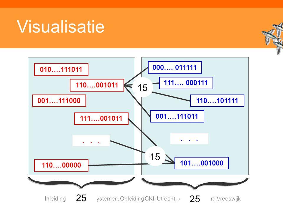 Visualisatie 000…. 011111. 101….001000. 001….111011. . . . 110….101111. 111…. 000111. 010….111011.