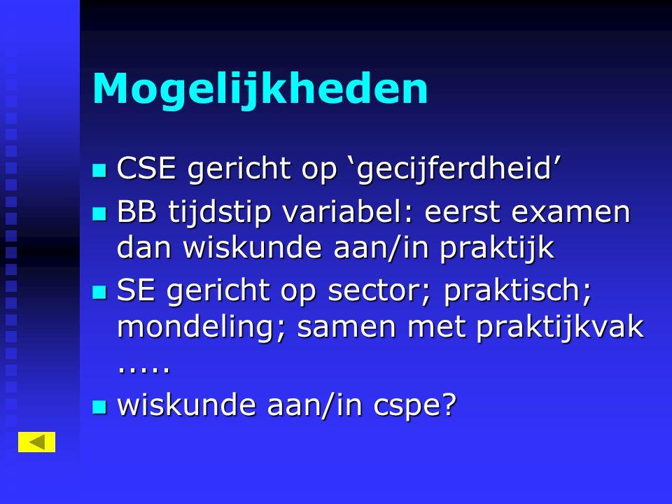 Mogelijkheden CSE gericht op 'gecijferdheid'