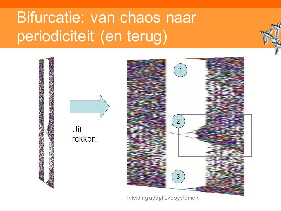 Bifurcatie: van chaos naar periodiciteit (en terug)