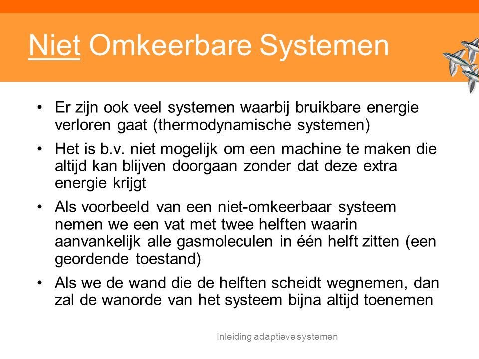 Niet Omkeerbare Systemen