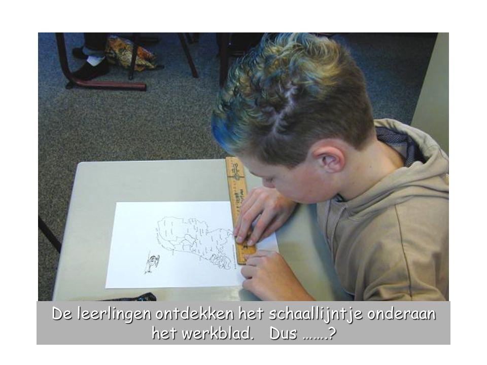 De leerlingen ontdekken het schaallijntje onderaan het werkblad. Dus …….