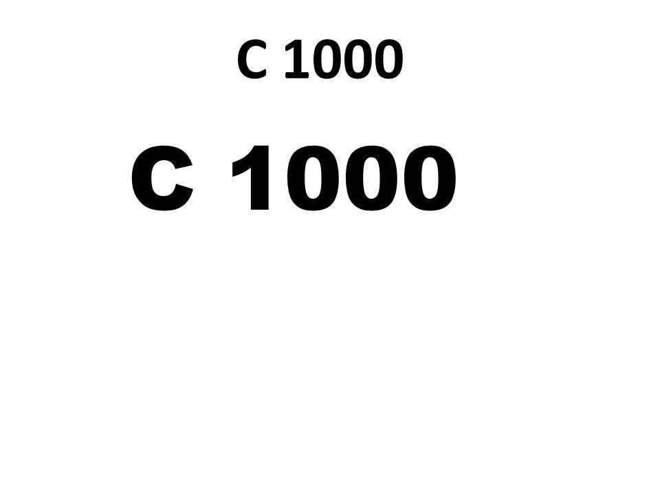 C 1000 C 1000