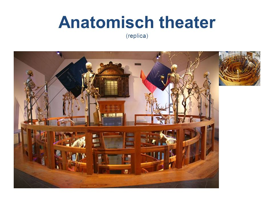 Anatomisch theater (replica)