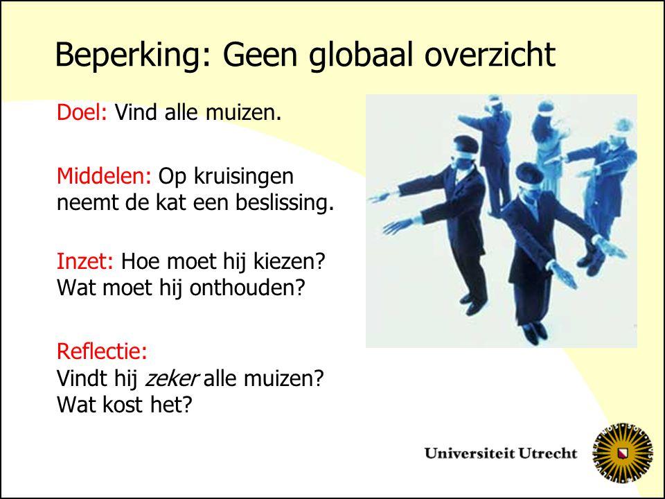 Beperking: Geen globaal overzicht