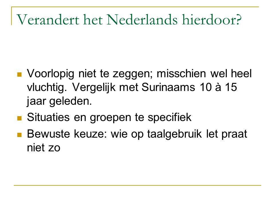 Verandert het Nederlands hierdoor