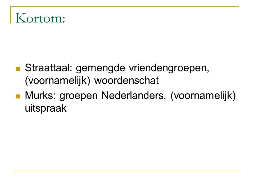Kortom: Straattaal: gemengde vriendengroepen, (voornamelijk) woordenschat.