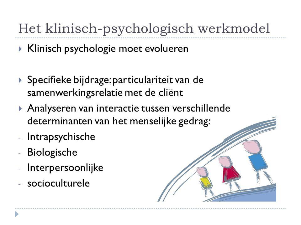 Het klinisch-psychologisch werkmodel