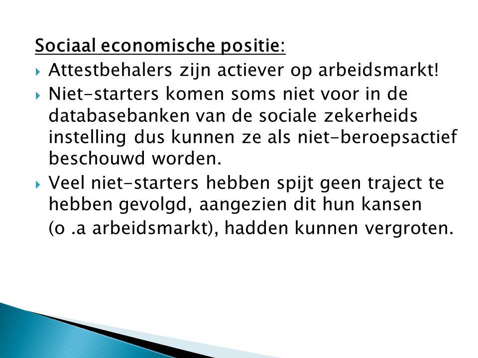 Sociaal economische positie: