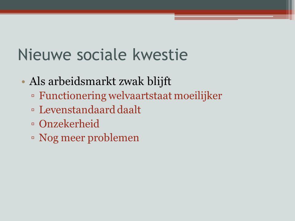 Nieuwe sociale kwestie