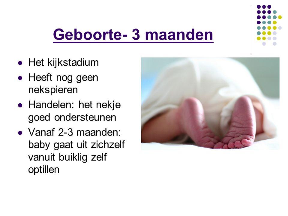 Geboorte- 3 maanden Het kijkstadium Heeft nog geen nekspieren