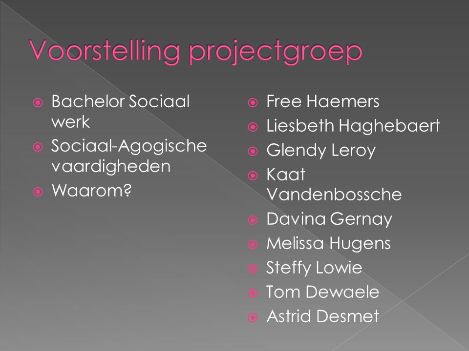 Voorstelling projectgroep