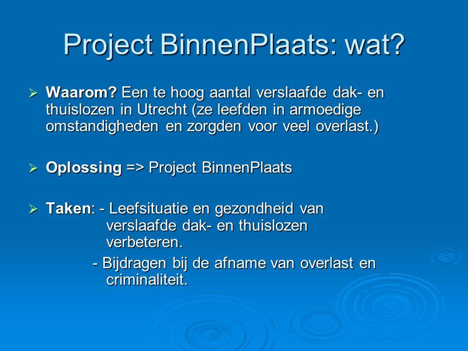 Project BinnenPlaats: wat